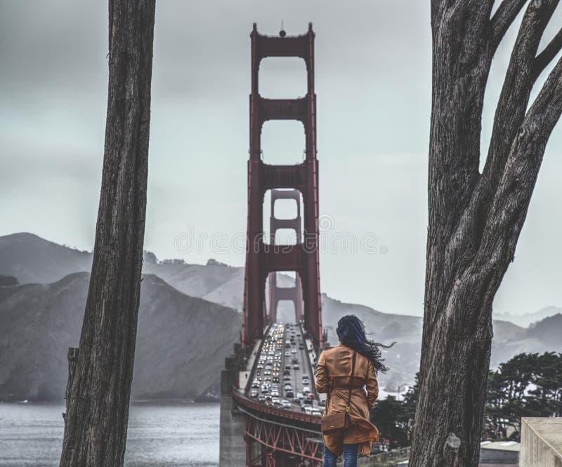 Golden Gate Gaze stock foto's