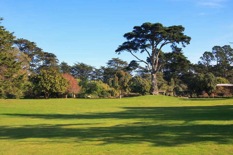 Golden Gate Park royalty free stock photography