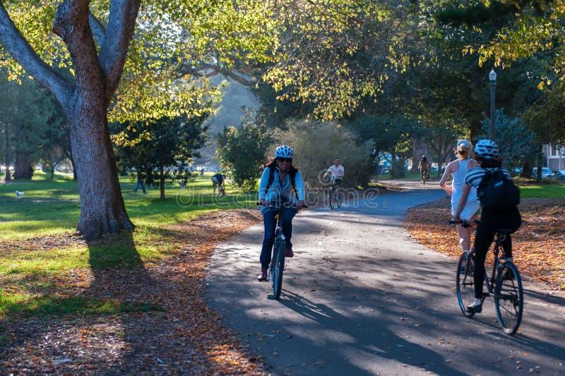 Golden Gate Parkområde i San Francisco med en medborgare som cyklar i den royaltyfri bild