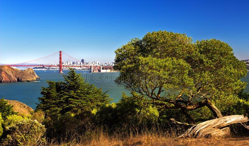 Golden Gatemening royalty-vrije stock foto's