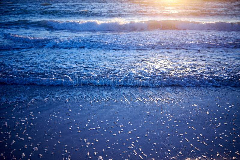 Golden glow of sunset over gently lapping waves. On a beach on Anna Maria Island, Florida, USA in a low angle view with reflection royalty free stock images