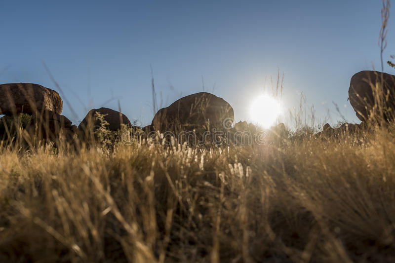 Golden grass with rocks. And the sun in the background stock photos