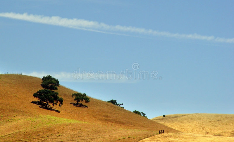Golden hills royalty free stock photos