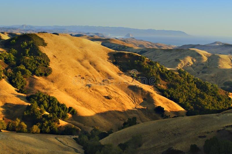 Golden Hills of California royalty free stock photo