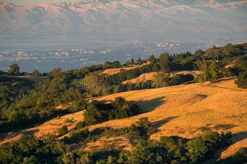 Golden hills in the sunset light; Sunnyvale, San Francisco bay area in the background, California royalty free stock photography