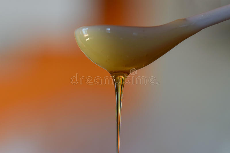 Download Golden Honey Dripping From A Spoon Stock Photo - Image: 83707941