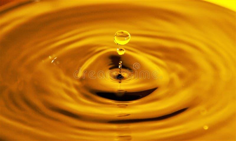 Golden Honey Drop stock photo