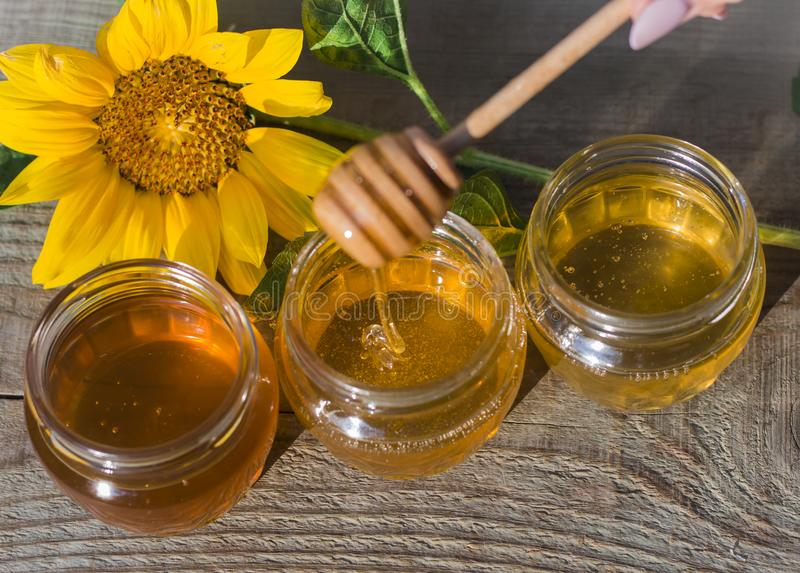Golden honey in three jars with a wooden spoon and sunflower in the sun stock images