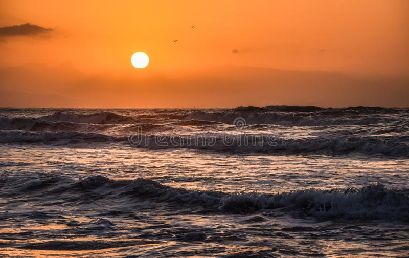 Golden hour on the beach royalty free stock image