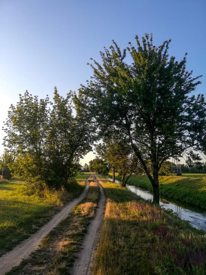 Golden hour in Brno. River, tree, sunset, road, sky, bluesky royalty free stock photo