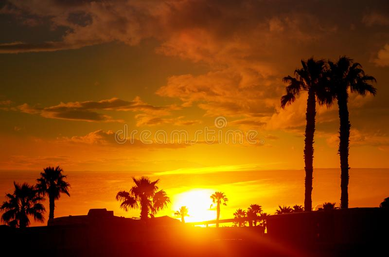 Golden hour with the mountains on the classic Arizona sunset with palm trees. Golden hour with the mountains on the classic Phoenix, Arizona sunset with palm royalty free stock images