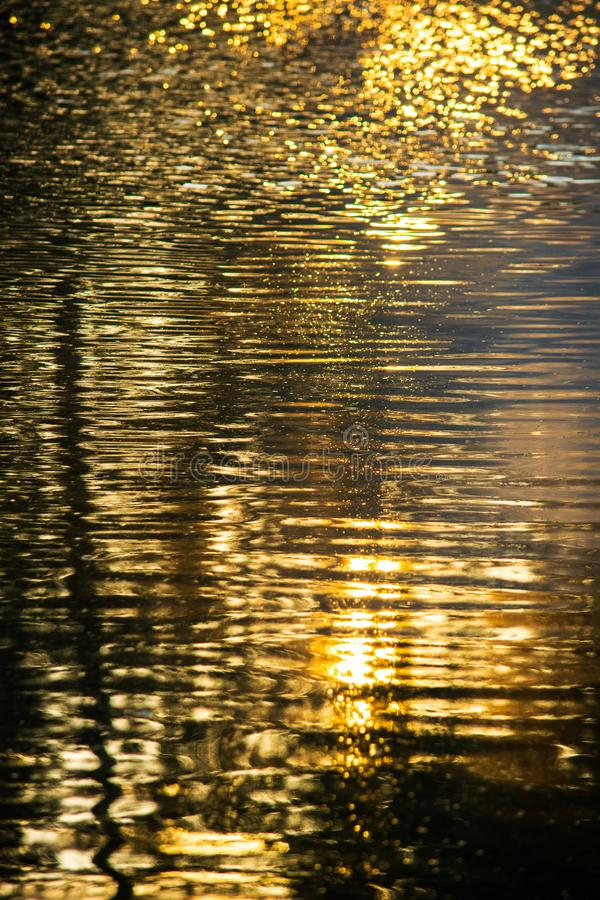 Golden Hour Pond Reflections Water Abstract stock images