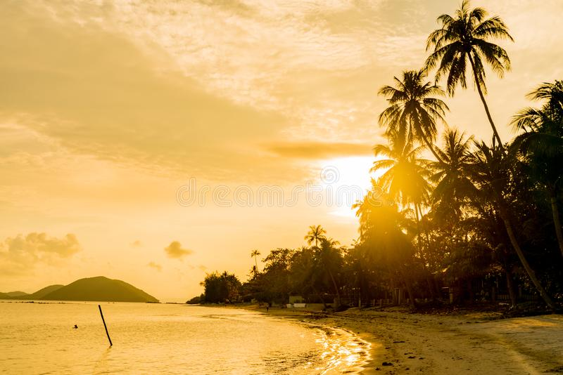 Sunrise along Ko Samui beach, Thailand. Golden hues of sunrise along Ko Samui beach, Thailand royalty free stock photos