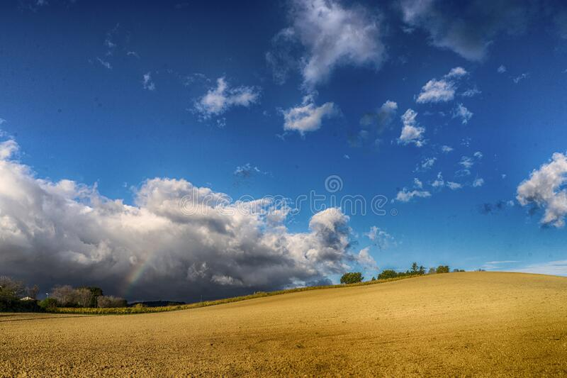Golden land and blue sky landscape royalty free stock photo