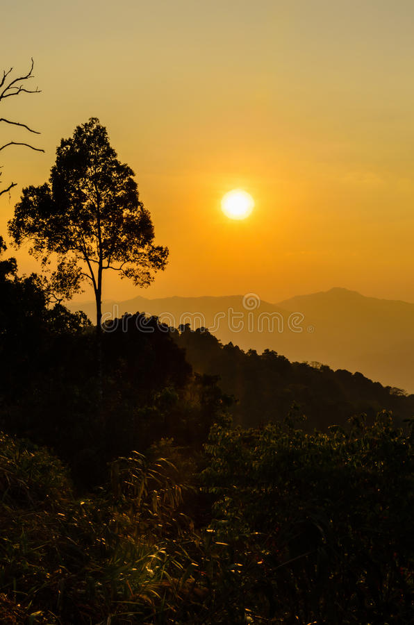 Download Golden light of sunset stock photo. Image of bright, nature - 42173462