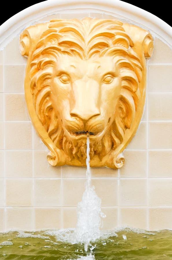 Golden lion head fountain stock photography