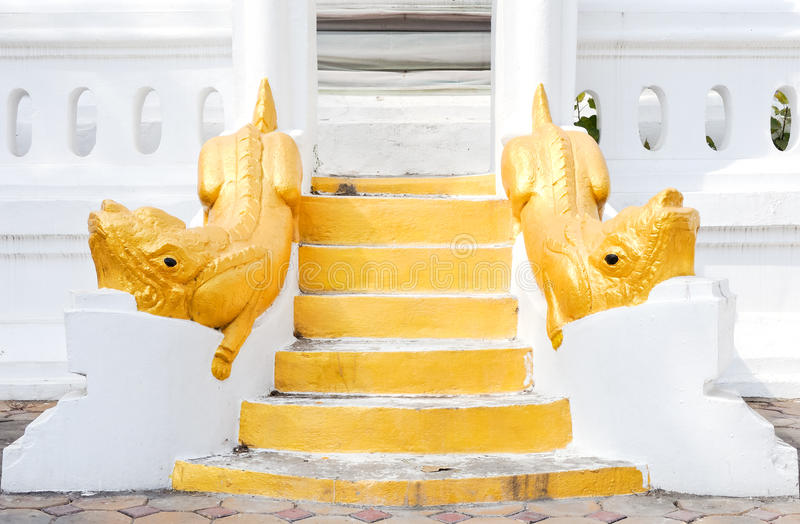 Golden lion statues stock image