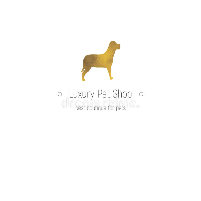 Luxury Brand Name Golden Floral Logo Concept Design: Logotype Luxury Limousine Car And Carpet Icon Isolated On