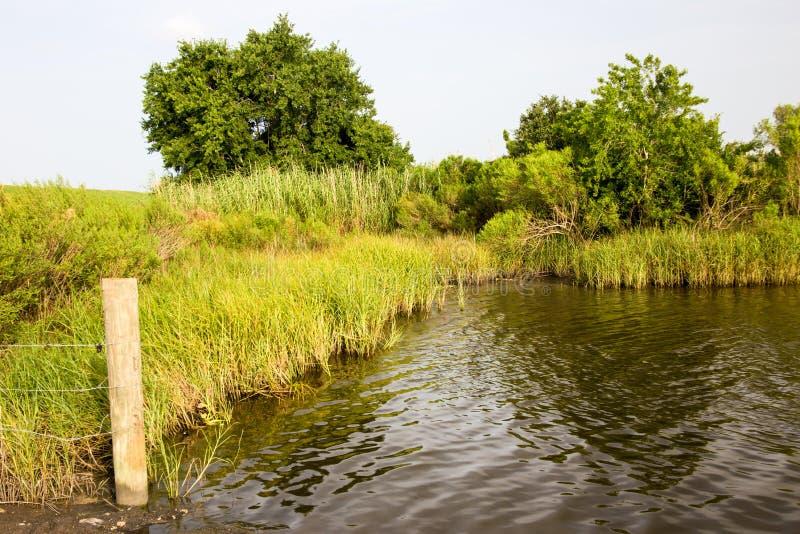 Golden Meadow, Louisiana stock photos