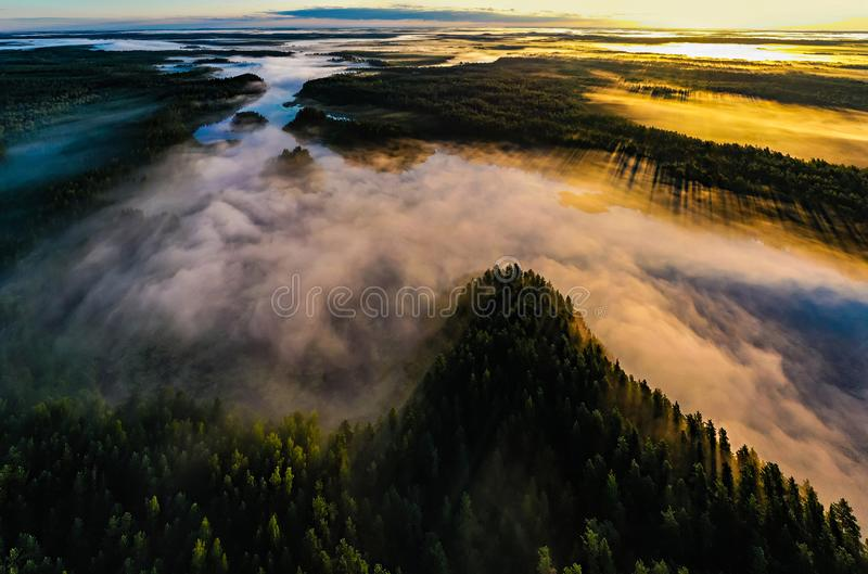 Golden morning in wilderness. Forest and lakes in fog, aerial landscape stock photography