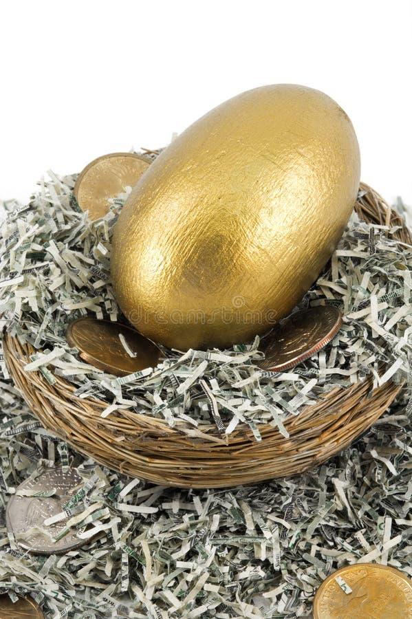 Free Golden Nest Egg Closeup Royalty Free Stock Photo - 2270395