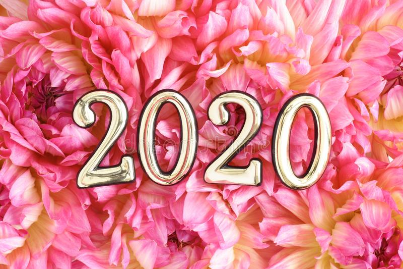 Happy New Year - 2020!. Golden 2020 numbers on pink dahlia background. Happy New Year royalty free stock photos