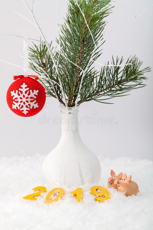 Funny pigs under the holiday tree royalty free stock images