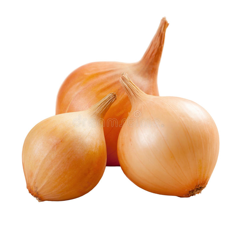 Free Golden Onions Isolated Stock Photos - 37614313
