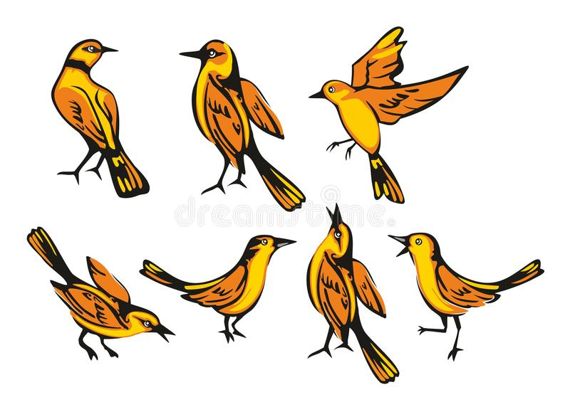 Golden Oriole isolated on white background. Set sitting and flying bird. Vector flat illustration stock illustration