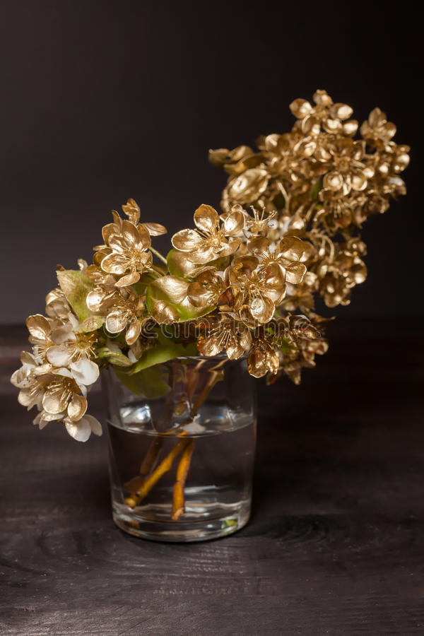 Download Golden Pear flowers stock image. Image of nature, stem - 39513197