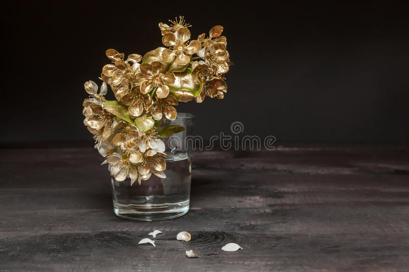 Download Golden Pear flowers stock photo. Image of branch, blossom - 39513256