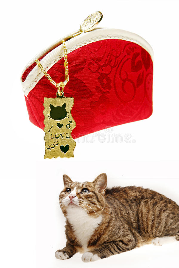 Golden pendant with cat stock image