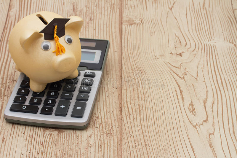 A golden piggy bank with grad cap and calculator on wood backgro. A golden with grad cap piggy bank and calculator on a wood background with copy space for your royalty free stock photos