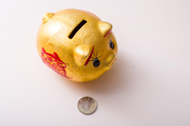 The pig piggy bank. Golden piggy bank isolated with clippingpath included royalty free stock photography