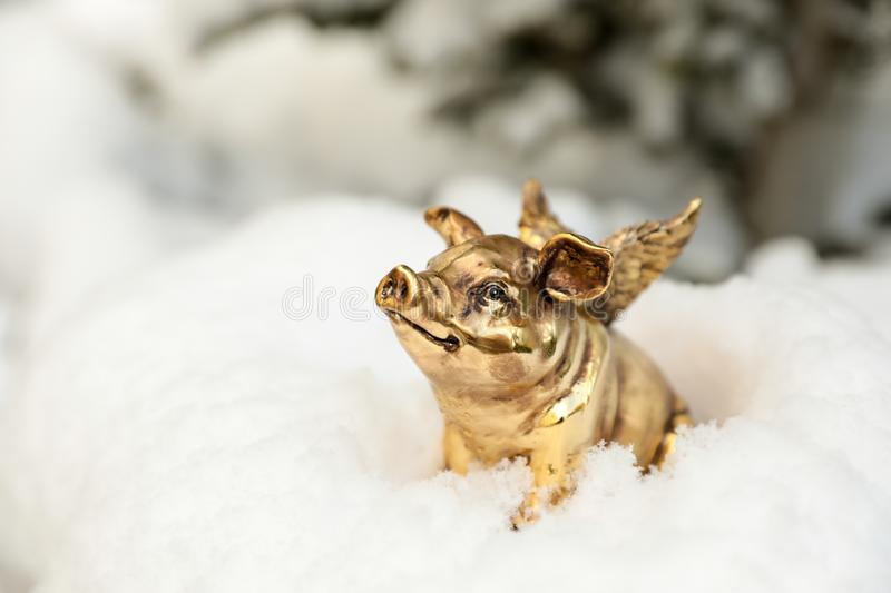 Golden piggy statuette in the snow as a symbol of 2019. Golden piggy statuette in the snow as a symbol of 2019, concept photo. Horizontal. Close-up royalty free stock photography