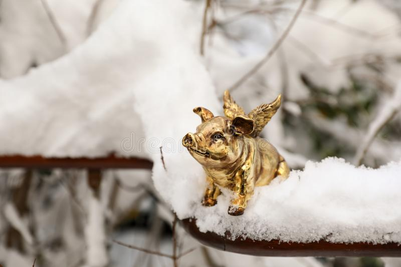 Golden piggy statuette in the snow as a symbol of 2019. Golden piggy statuette in the snow as a symbol of 2019, concept photo. Horizontal. Close-up stock photos