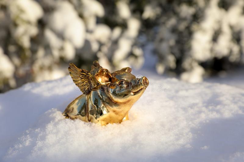 Golden piggy statuette in the snow as a symbol of 2019. Concept photo. Horizontal. Close-up royalty free stock photography