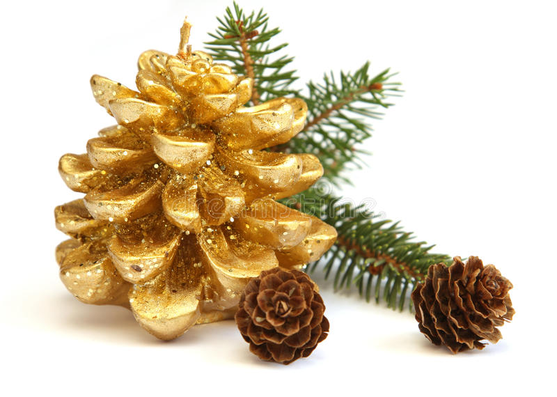Download Golden Pine Cone And Branch Of Christmas Tree Stock Photo - Image: 17428272