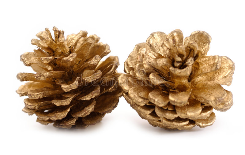 Golden Pine Cones Royalty Free Stock Photography