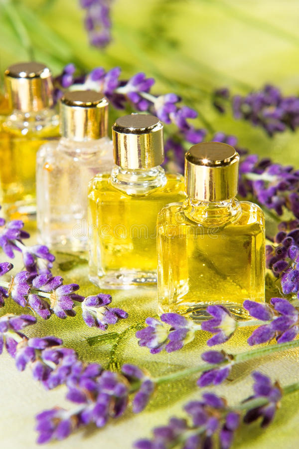 Golden plant extracts and essential oils. In clear glass bottles for use in aromatherapy and perfumery surrounded by fresh purple blossom stock images
