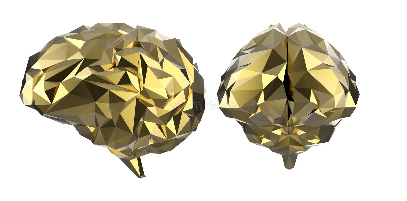Golden polygonal brain. 3d rendering golden polygonal brain isolated on white stock photography
