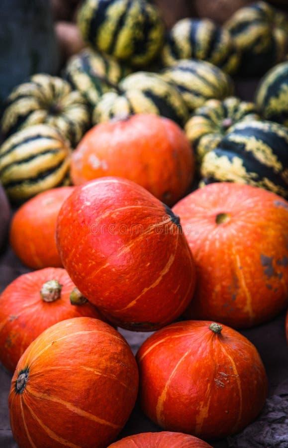 Download Golden pumpkin stock photo. Image of decoration, focus - 26633608