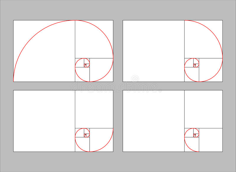 Golden ratio section vector illustration