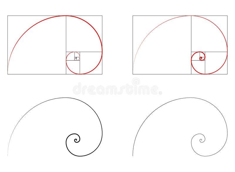 Golden ratio spiral section set. Vector illustration vector illustration