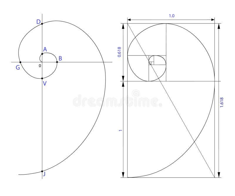 Golden ratio. Vector illustration set on white background vector illustration