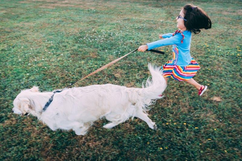 Golden retriever blanc fonctionnant avec une laisse tandis qu'une petite fille heureuse essaye de se tenir dessus sur elle photo libre de droits