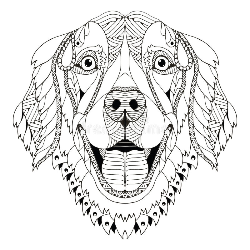 Golden retriever dog zentangle stylized head, freehand pencil, h stock illustration