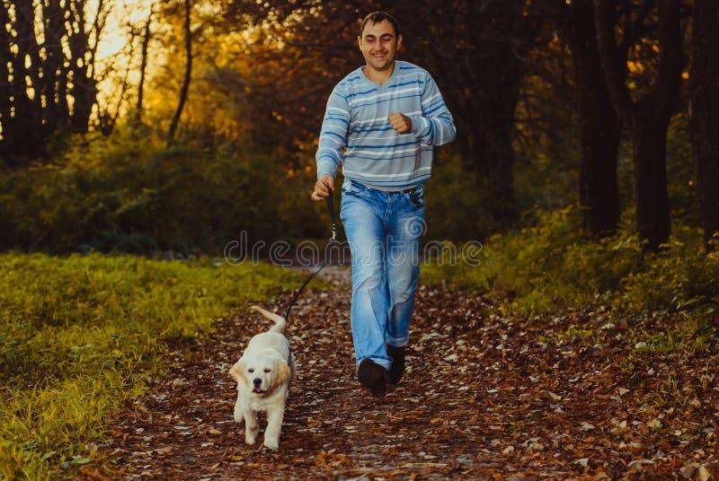 Golden retrieverhund med ägaren royaltyfria foton