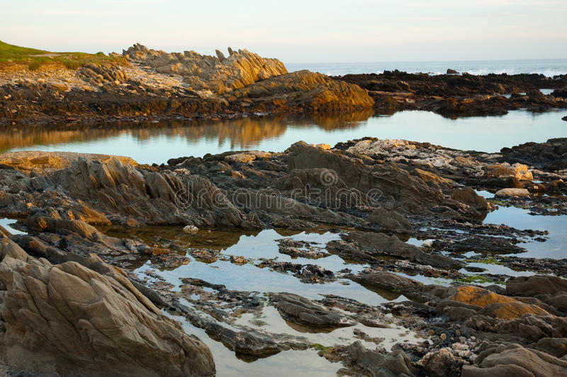 Golden Rockpools At Seaview, Port Elizabeth, South Africa. Stock Photo