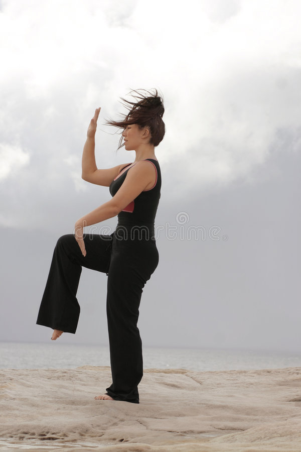 Golden Rooster. Female performs 'Golden rooster stands on one leg'. Tai chi disciplines are derived from martial art and natural movements of birds and animals stock image
